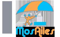 Logo du groupe mosailes